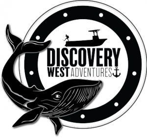 discovery west logo